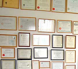Physiotherapy Acupuncture Degrees Diplomas